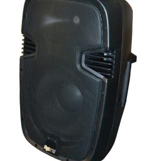 Hybrid PM12 Passive PA Speaker